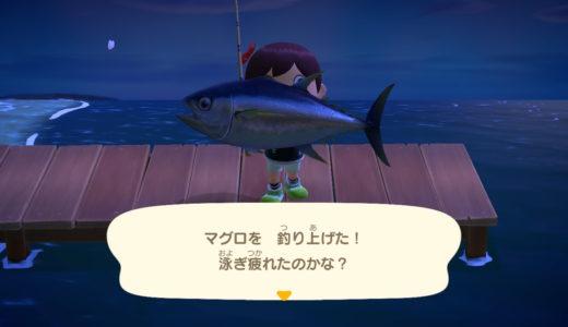 【あつ森】マグロ・カジキの効率的な釣り方!4月のレア魚だから必ず釣っておこう