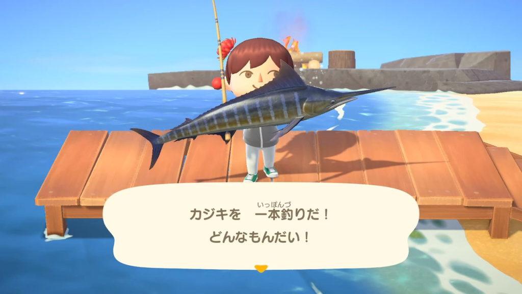あつ森6月魚南半球