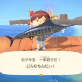 【あつ森】4月に釣れる魚一覧表!(北半球~南半球)レア魚紹介
